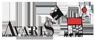 logo-avaris